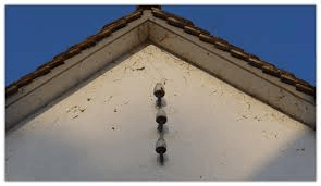 Spinnennetze an Fassaden